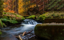 Autumn forest river creek flow. Forest river creek in autumn. Forest river creek view