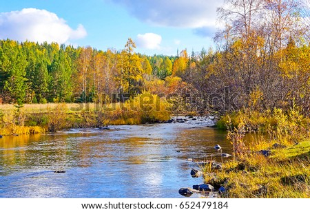 Autumn forest river landscape #652479184