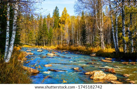Autumn forest river landscape. River in autumn forest