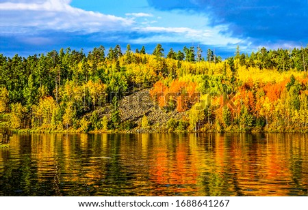 Autumn forest river refelction in water. Forest river in autumn. Autumn forest river trees