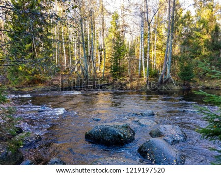 Autumn forest river rocks view. Wild river rocks in autumn forest. Autumn forest river boulders. Autumn forest river rocks landscape