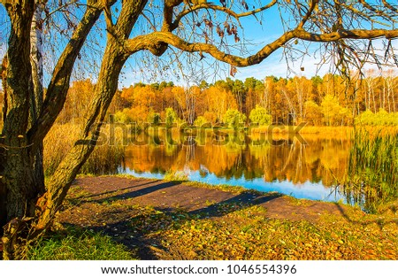 Autumn forest river tree landscape #1046554396