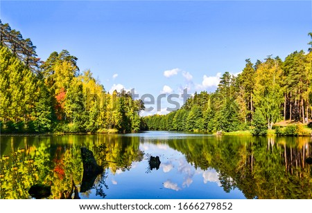 Autumn forest river water landscape. Forest river in autumn. Autumn forest river view. Forest river water in autumn season