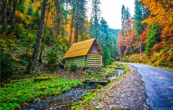 Autumn forest road house view. Road hut in autumn forest. Autumn forest road hut. Road house in autumn forest landscape