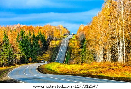 Autumn forest road landscape. Mountain forest road in autumn. Autumn road in autumn mountain forest scene