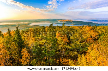 Autumn forest top view landscape. Forest in autumn. Autumn forest landscape