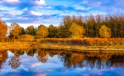 Autumn forest trees are reflected in the river. River in autumn forest. Forest river in autumn