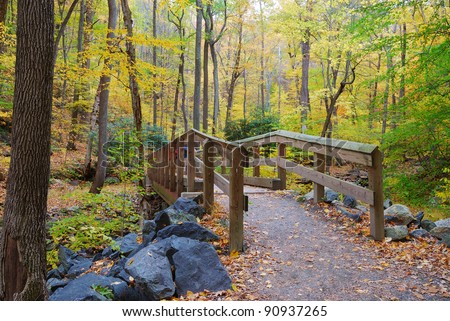 Autumn forest with wood bridge over creek in yellow maple forest with trees and colorful foliage.