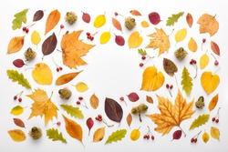 Autumn frame made of leaves and acorns on white background, copy space. Flat lay, top view.