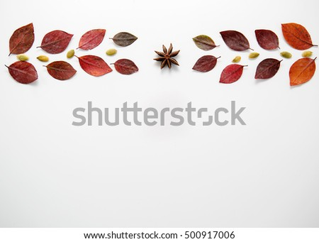 Autumn frame with leaves design on a white background #500917006