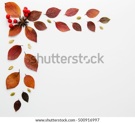 Autumn frame with leaves on a white background, half of the sheet, there is a place for inscriptions. Dry red leaves, top view, flat version #500916997