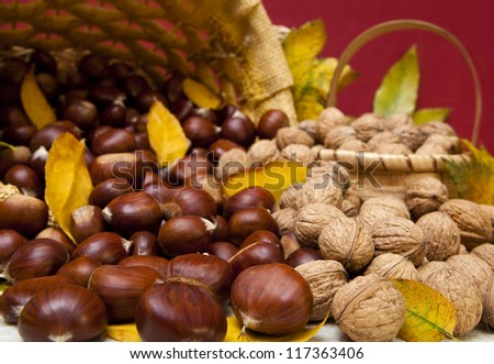 Autumn fruit composition with chestnuts and walnuts