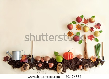 Autumn fruits growing in soil patch with apple tree  #1193476864