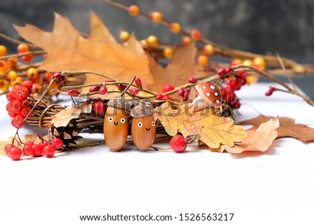autumn funny figures made with acorns. acorns face character and oak leaves on white table. Two cute smiling nuts in hats. children's creativity from forest harvest. creative DIY idea.  #1526563217