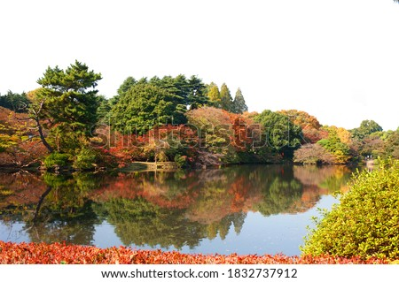 Autumn garden and lake with empty sky