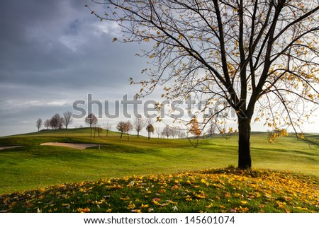 Autumn golf course in the morning