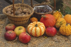 autumn goods, wild apples, pumpkins and nuts