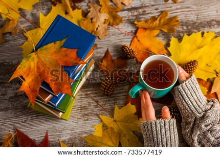 Autumn. Hands holding a Cup of tea. Books colorful. #733577419