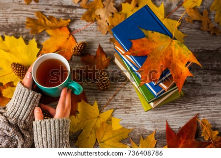 Autumn. Hands holding a Cup of tea. Books colorful. #736408786