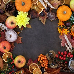 Autumn harvest festival background border with food, flora & fauna on lokta background. Top view, flat lay.