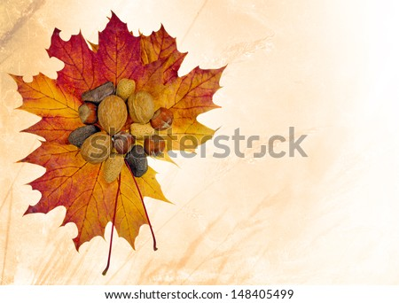 stock-photo-autumn-harvest-of-mixed-whole-nuts-on-maple-leaves-148405499.jpg