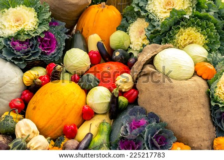 Autumn harvest on the ground as a background #225217783
