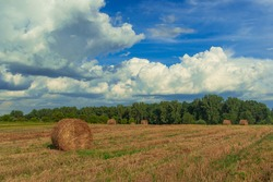 autumn harvest season time farmland field scenic view with haystack and background country side environment space