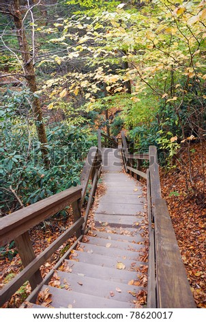 Autumn hiking trail with foliage in woods. From Bushkill Falls, Pennsylvania.