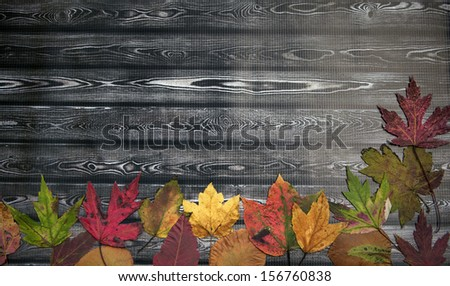 Autumn Holiday Thanksgiving Background