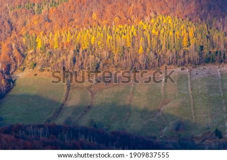 Autumn in Bieszczady,  photo taken at sunset Zdjęcia stock ©