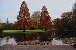 Autumn in Het Park in Rotterdam. Beautiful Fall Park with Colorful Trees and Lake.