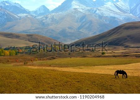 Autumn In Kyrgyzstan #1190204968