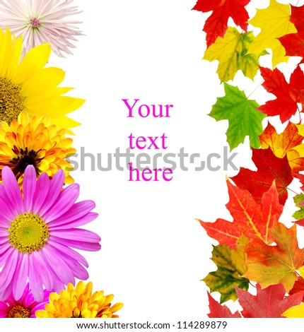Autumn in leaves and flowers background