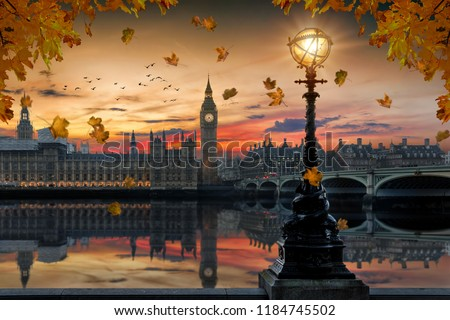 Autumn in London: golden sunset behind the Westminster Palace by the Thames river with falling autumn leafs from the trees in front, United Kingdom