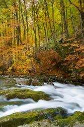 Autumn in Ordesa National Park, Pyrenees, Huesca, Aragon in Spain.