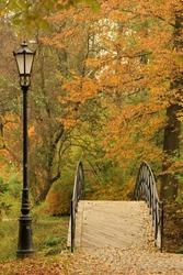 Autumn in Park near Pszczyna Castle or Pless Castle in Pszczyna town in Poland
