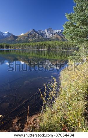 Autumn in Rocky Mountain, Alberta, Canada
