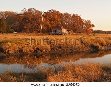Autumn in salt marshes - stock photo