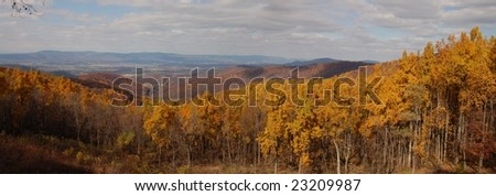 Autumn in the Appalachians - Shenandoah National Park, Virginia
