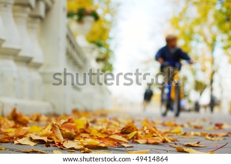 Autumn in the city park.