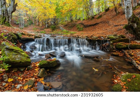Autumn in the forest mountain stream. Beautiful autumn forest, rocks covered with moss. Mountain river with rapids and waterfalls. Nearby is the tourist route through the village Pylypets.Carpathian.
