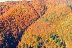 Autumn in the mountains. View of the mountains in autumn. Beautiful nature landscape. View from above