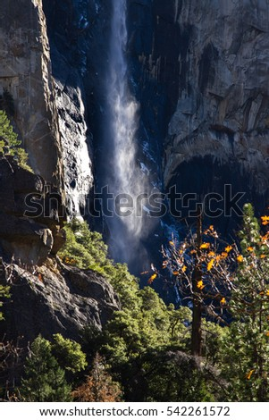 Autumn in Yosemite after a storm, with a bit of water still running down granite mountain and a splash of sunshine lighting up the mist #542261572