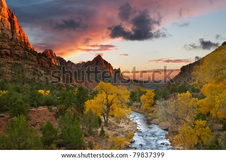 Autumn in Zion National Park, Utah. #79837399
