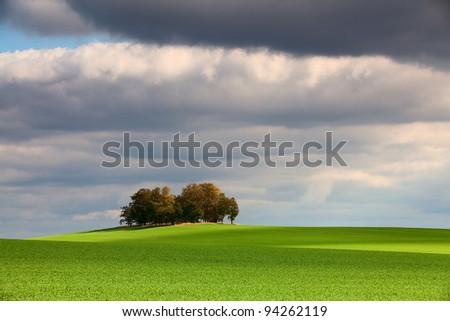 Autumn island in the green field