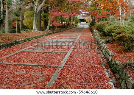 Autumn Japanese Temple with Red Maple