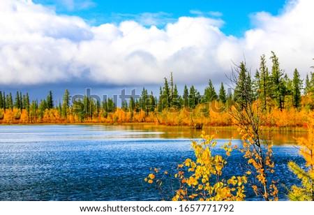 Autumn lake nature river landscape. Autumn lake water view