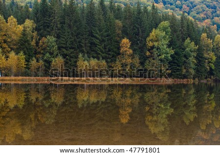 Autumn landscape at Saint Anna Lake which is located in a volcanic crate from Romania