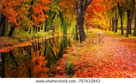 Autumn landscape beautiful colored trees over the river, glowing in sunlight. wonderful picturesque background. color in nature. gorgeous view.