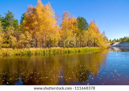 Autumn Landscape.  Fallen leaves float on a river. - stock photo